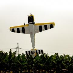 Pilot-Rc-extra330lx-92-10
