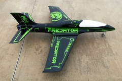Predator (7)