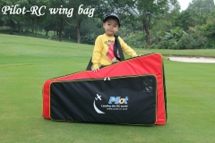 Wingbags (1)