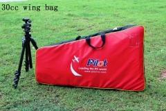 Wingbags (12)