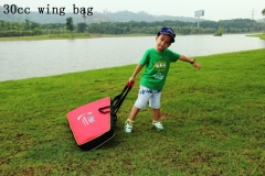 Wingbags (13)